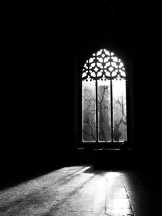Uploaded by Shadow. Find images and videos about photography, black and white and dark on We Heart It - the app to get lost in what you love. Gothic Aesthetic, Ivy House, Through The Window, Light And Shadow, Black And White Photography, Dark Side, Art Photography, Windows, Abandoned
