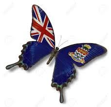 Picture of British Virgin Islands flag on butterfly isolated on white stock photo, images and stock photography. Anguilla Flag, Cayman Islands Flag, British Virgin Islands Flag, Guam Flag, Flag Vector, Aleta, Flag Colors, Garden Trowel