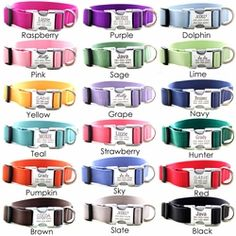 Personalized Nylon Dog Collar with Laser Engraved Metal Buckle