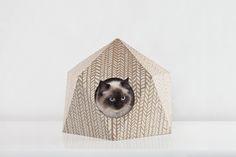 Cat Cube - .: Delphine Courier .:. Graphic Design :.