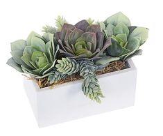 Maceta con plantas y cactus artificiales