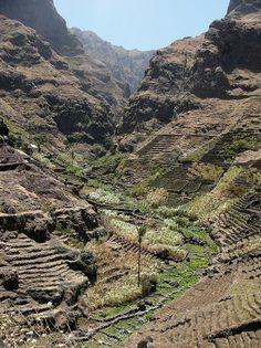 Terraced farms in Santo Antão, Cape Verde https://www.stopsleepgo.com/vacation-rentals/cape-verde