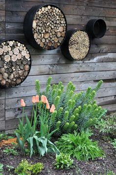 Pets Home : Euphorbia characias Black pearl Calli. - - Pets Home : Euphorbia characias Black pearl Calli… – – Bug Hotel, Insect Hotel, Garden Junk, Garden Art, Wooden Garden, Easy Garden, Garden Landscape Design, Garden Landscaping, Landscaping Design