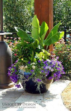 Wonderful pot