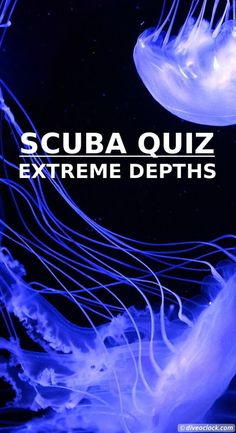 SCUBA QUIZ: Extreme Depths! How deep is the ocean? How deep can light penetrate in the ocean? How deep has a human ever been in the ocean? Can you guess the right depths of these and other questions in this quiz? https://www.diveoclock.com/quiz/19_Depths/ underwater | ocean | sea life | diving |  dive the world | scuba diver | dive instructor | underwater photography | duiken | tauchen | under the sea | marine conservation | marine life |