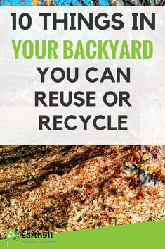 Reuse and recycle these ten items in your backyard. Recycling Information, Waste Reduction, Reduce Reuse Recycle, Eco Friendly House, Know Who You Are, Things To Come, Home And Garden, Backyard, Earth