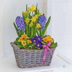 Happy Birthday Classic Spring Basket | Adrienne Florist | Leeds ...