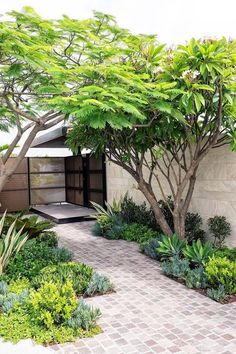 50 Chic Small Backyard Landscaping Design Ideas That You Wil Love It - The right small backyard landscaping ideas can help you squeeze a lot of use out of a little land. Those expansive, perfectly manicured, fancifully la. Small Yard Landscaping, Small Backyard Design, Backyard Patio Designs, Small Backyard Landscaping, Landscaping Ideas, Backyard Ideas, Small Space Gardening, Small Gardens, Vertical Gardens