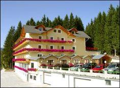 Herzlich willkommen in der weststeirischen Lipizzanerheimat in Graden bei Köflach!  Nur 50 Kilometer von der Landeshauptstadt Graz entfernt, am Süd-östlichen Ausläufer der Stubalpe, finden Sie auf knapp 1.000 m Seehöhe Ihr 4 Sterne-Wohlfühlhotel für 365 Tage im Jahr.
