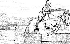 Ausmalbilder Pferde Springreiten - Ausmalbilder Pferde Kostenlos Zum Ausdrucken