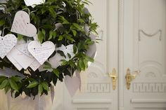 A Wish Tree , with wished for the Bride and Groom