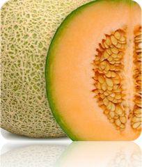 Melon - Honey Rock