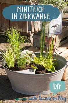 Back Gardens, Outdoor Gardens, Garden Wallpaper, Diy Playground, Backyard Landscaping, Lawn, Landscape, Diy Beton, Mini Pond