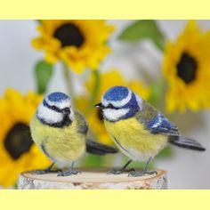 "413 To se mi líbí, 57 komentářů – hiro (@mukutokana.hiro2) na Instagramu: ""羊毛フェルト★アオガラ♪  Needle  felted / Blue Tit * インスタグラム始めて世界が広がりました 100枚目のポストは、海外の鳥にしてみました(*^-^*)…"""