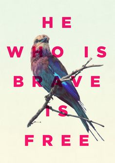 He was is brave is free.