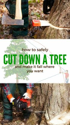 cut down a tree safely - make it fall where you want it!