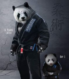 Share your martial arts journey in a comment below! Where'd you start and how far have you come? Reposted from - Martial arts hero Martial Arts Styles, Martial Arts Techniques, Mma, Muay Thai, Character Art, Character Design, Panda Wallpapers, Martial Arts Workout, Boxing Workout