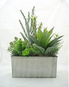 Lush Agave Silk Succulent Arrangement in by BranchofLifeSilks, $40.00