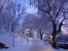Wintertime in Stockholm... beautiful as in a fairytale!