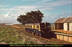 Kilcunda - 1976 Melbourne Victoria, Victoria Australia, Old Photos, Vintage Photos, Rail Train, Back In The Day, Vr, Postcards, Abandoned
