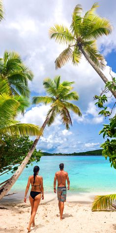 Cruises to St. Wild Forest, Forest Trail, Cruise Destinations, Cruise Vacation, St Johns Antigua, Palm Tree Island, Royal Caribbean Cruise, Shore Excursions, Beautiful Places To Travel