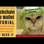 Blockchain Info Wallet How-To Use Guide [Crypto 101 Series] Ways To Earn Money, How To Make Money, How To Get, Tree Sketches, Bitcoin Transaction, Wallet Tutorial, Bitcoin Wallet, Crypto Currencies, Wedding Humor