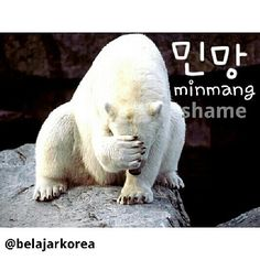 Those who often watch korean variety shows might used to see this word : 민망 (minmang). 민망 means 'shame'. So when it appears, that means the person who's on screen is embarrassed.