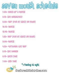 7 Month Old Schedule