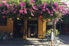 Hoi An is a peaceful and lovely little town on coast of central Vietnam. Hoi An Old Town offers the special things which you can not find in any where else Wall Colors, House Colors, Hoi An Old Town, Covered Bridges, Night Time, Picture Show, The Locals, Night Light, Vietnam