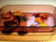 Fall Craft: Preserving Fall Leaves with Glycerin