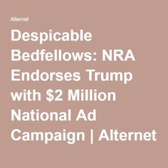 Despicable Bedfellows: NRA Endorses Trump with $2 Million National Ad Campaign | Alternet
