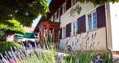 Im Kinzigtal, in kleinen Örtchen Hofstetten, angesiedelt ist die Linde. Innen rustikal/neu gestaltet und der Außenbereich lädt als Biergarten oder zum hervorragend Essen ein!  Kann man nur Empfehlen ...!