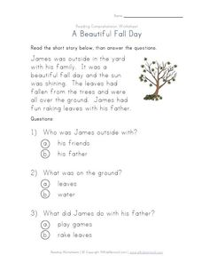Fall reading comprehension worksheet for kids. Read the simple fall story and then answer a few basic questions about it. First Grade Reading Comprehension, Reading Comprehension Worksheets, Reading Passages, Reading Resources, Reading Activities, Guided Reading, Teaching Reading, Learning, English Reading