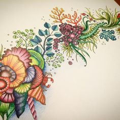 Lost Ocean - Johanna Basford | Colouring Gallery