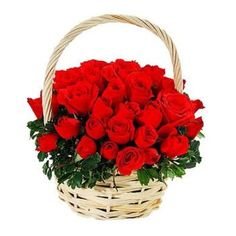 60 red roses basket is ready to send flowers to Pakistan in all major cities with free roses delivery to Pakistan Rose Delivery, Online Flower Delivery, Same Day Flower Delivery, Flowers For Valentines Day, Rose Basket, Send Flowers Online, Corporate Flowers, Amazing Flowers, Beautiful Roses
