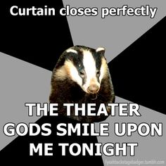 """Backstage Badger"" Curtian closes perfectly, the theatre gods smile upon me tonight."