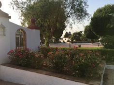 Es ist nicht einfach nur ein andalusisches Landhaus, sondern es gehört ein Restaurant, Pferdeställe, ein Reitplatz, Hundezwinger, Geflügelställe, ein Teich, ein Schwimmbad sowie ein Garten dazu. Es liegt inmitten einer wunderschönen Landschaft und ist doch gut erreichbar. Malaga, Sidewalk, Restaurant, Sevilla, Cordoba, Shared Rooms, Dog Kennels, Rustic Style, Andalusia