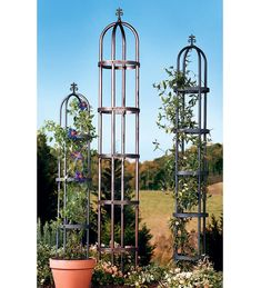 Steel garden trellis obelisks. Available in 2 finishes and they are just $20 each!
