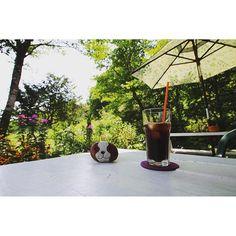 【1124numa】さんのInstagramをピンしています。 《【森の中の古民家カフェ】 昨日行ったお気に入りのカフェは、わんちゃんのモカ店長さんが入り口でお出迎えしてくれる『モカモアコーヒー』  天気が良い日は、テラス席で自家製アイスコーヒーを飲みながら、鳥のさえずりや沢山の草花に囲まれて、まったり癒されるひとときでした。お腹いっぱいで美味しいスウィーツは食べられず残念でした #モカモアコーヒー#七ツ森#古民家カフェ#カフェ#隠れ家#コーヒータイム#アイスコーヒー#自家焙煎 #森#癒し#暮らしを楽しむ#休日#暮らし#日々#ライフスタイル#写真好きな人と繋がりたい #cafe #coffeetime #coffee #coffeelover #☕️》