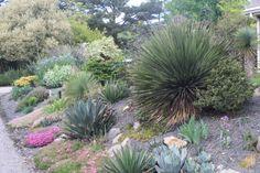 JLBG Alpine Garden - West