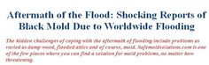 The hidden challenges of coping with the aftermath of flooding include problems as varied as damp wood, flooded attics and of course, mold. http://www.safemoldsolutions.com