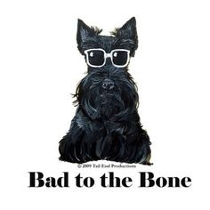 Scottish Terrier Collection : Tail End Productions Dog Art By Cherry ONeill Cairn Terrier, Terrier Dogs, Scottish Terriers, Animals And Pets, Cute Animals, Westies, Dog Art, Beautiful Dogs, Dog Love