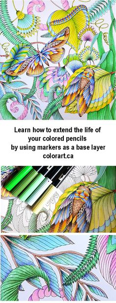 Visit colorant.ca to learn how to use Tombow dual brush pens as a base layer for colored pencils.
