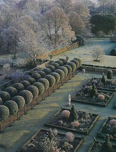 Hatfield House, Hertfordshire (GB) -Lady Salisbury's topiary allee misted by hoarfrost - the Dowager Marchioness of Salisbury (also of Cranborne Manor) is one of England's most revered garden designers Formal Garden Design, English Garden Design, Topiary Garden, Garden Art, Formal Gardens, Outdoor Gardens, Parks, English Style, Winter Garden