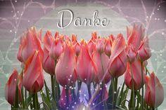 Geschenkidee, Muttertag, Digitalgrafik, Wandbild, Blumen, Tulpen Web Banner, Flyer, Grafik Design, Portrait, Inspiration, Tulips, Mother's Day, Graphics, Wall Prints