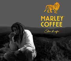 Jamaica-Inspired Marley Coffee Moving to Denver and Hiring My Coffee Shop, Coffee To Go, Coffee Coffee, Cafe Bio, Marley Coffee, People Drinking Coffee, Blue Mountain Coffee, Coffee Origin, Nesta Marley