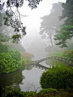 Gardens in the mist, Tatton Park in Cheshire / England (by onerainmaker).