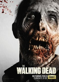 Poster Annual 2015 - The Walking Dead