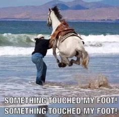 Haha this is me when I feel something in the ocean