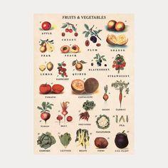 Klassisk fin plansje fra Cavallini & Co. med tittelen'Fruits and vegetables'.Passer enten som innpakningspapir eller kan brukes som plakat på veggen. Produsent:Cavallini & Co.Dimensjoner:70x50cmSpesifikasjon:Trykket på italiensk syrefritt papir
